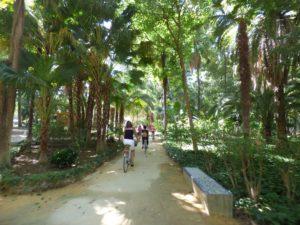 Seebybike Sevilla tours ( At the park ML)