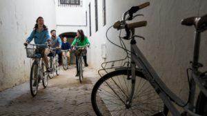 Seebybike Tour Santa Cruz